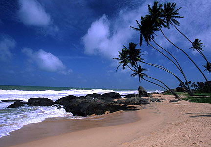 Day 12 : Beach stay at Bentota