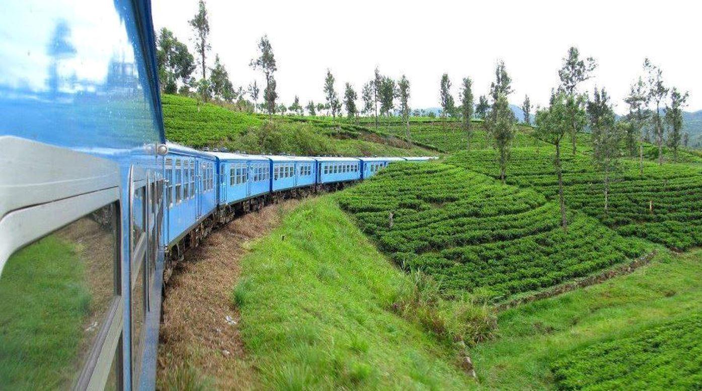 Day 6 : Kandy – Nuwara Eliya